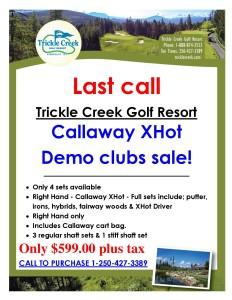 TCG Callaway Demo Sale 2015-page-001